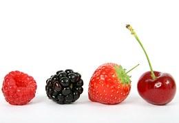 berry-1238249__180